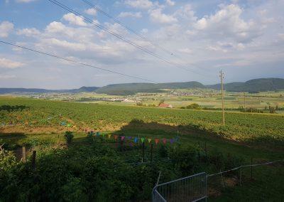 Erlebnisbauernhof-Region-Aussicht